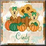 Bears ready for AutumnTagCindy