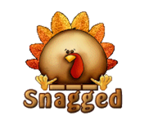 Snagged - ThanksgivingCuteTurkey
