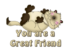 You are a Great Friend - KittySitUps