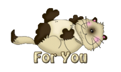 For You - KittySitUps