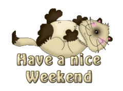 Have a nice Weekend - KittySitUps