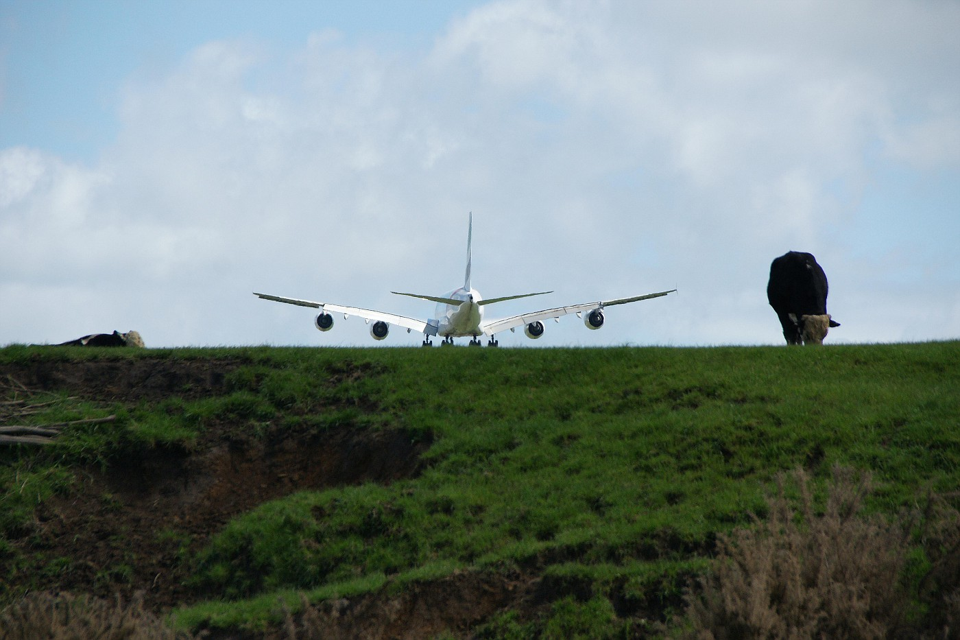 Down on the farm - not QUITE touching down just short of Jean Batten  International Airport
