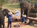 Mae Ping Elephant Camp near Chiang Mai in Northern Thailand Day 12 Feb 23-2006 (87)