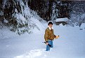 Winter Freeze and snow storm of 1993