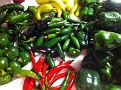 Thursday Nov 8 2012. Preparing this years last batch of Peppers for  Jarring.  I'll enjoy these this winter:-)