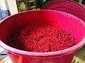 Merry Christmas from Natali Vineyards!!!  A new batch of Cranberry Wine!!!