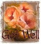 1Get Well-peachfloral