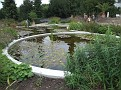 196. the pond, in front ot the main Greenhouse