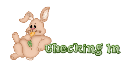 Checking In - BunnyWithCarrot