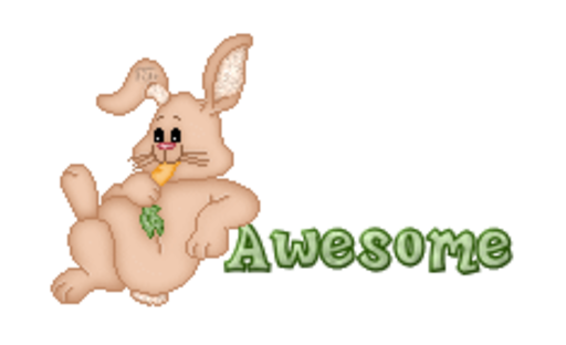 Awesome - BunnyWithCarrot