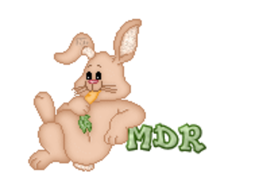 MDR - BunnyWithCarrot