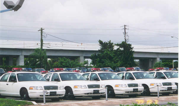 Misc - Ford PIs awaiting shipment to South America